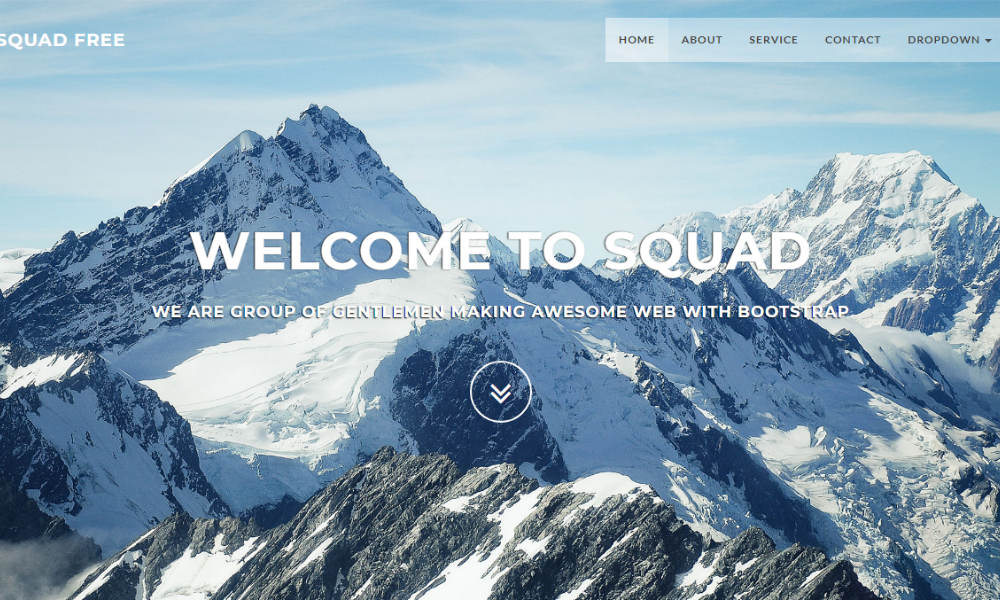 Free Bootstrap Theme - Squad Free