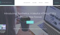 synthetica-bootstrap-theme